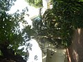8724BF Homes Parañaque Landmarks 45.jpg