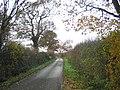 A country lane, Abridge - geograph.org.uk - 91259.jpg