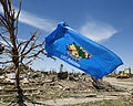 A flag flies from a tree in a destroyed neighborhood in Moore, Okla., May 22, 2013, after an EF5 tornado struck the area two days earlier 130522-Z-VF620-3737.jpg
