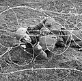 A soldier of the 7th Battalion, The Black Watch, cuts through barbed wire during training at Sumburgh in the Shetland Islands, 20 April 1941. H9025.jpg