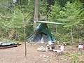 Abandoned Campsite near Cougar Reservoir, Willamette National Forest (34727486302).jpg
