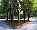 Acadia Carriage Path Intersection 19.JPG