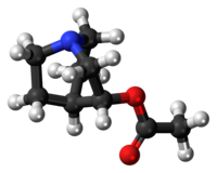 Ball-and-stick model of the aceclidine molecule