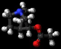 Pilk-kaj-bastona modelo de la aceclidinmolekulo