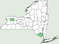 Achillea nobilis NY-dist-map.png