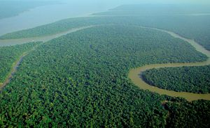 Natural capital - Aerial view of the Amazon Rainforest. Looked at as a natural capital asset, rainforests provide air and water regulation services, potential sources of new medicines and natural carbon sequestration.