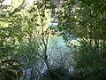 Aiguabarreig del riu Segre i el Noguera Pallaresa.JPG