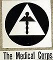 Air Raid Protective Services, Medical Corps insignia (34573243026).jpg