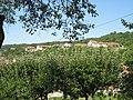 Aleksandrovac juli 2011 - panoramio (3).jpg