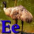 Alfabet zwierząt - literka E.png