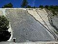 Alpes Haute-Provence Digne Route-De-Barles Dalle Ammonites 13072014 - panoramio.jpg