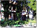 Alte Kelter - panoramio (2).jpg