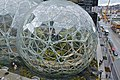 Amazon Spheres close-up (39245962465).jpg