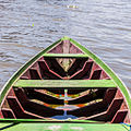 Amazonia por Flaviz Guerra 05.jpg