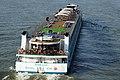 Amelia (ship, 2012) 028.JPG
