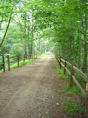 East Coast Greenway - Image: American Tobacco Trail