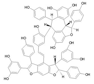Amurensin E - Image: Amurensin E