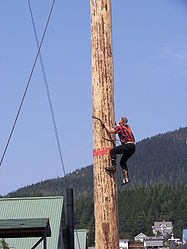 Andy Colle speed climb.jpg
