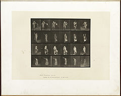 Animal locomotion. Plate 524 (Boston Public Library).jpg