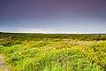 Anse aux Meadows, Newfoundland. (26493561277).jpg
