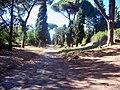 Appian Way, Rome (6681676803).jpg