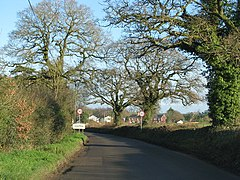 Approach to Feniton - geograph.org.uk - 1617402.jpg