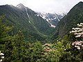 Approaching Yubeng through the Rhododendrons - panoramio.jpg