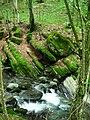Apriltzi, Bulgaria - panoramio (67).jpg