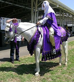 A gray horse being ridden by a person in purple and white Arabic-styled robes with a white scarf on her head. The saddle cloth and reins are also covered in purple cloth with black tassels.