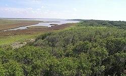 Great Texas Coastal Birding Trail Aransas National Wildlife Refuge1