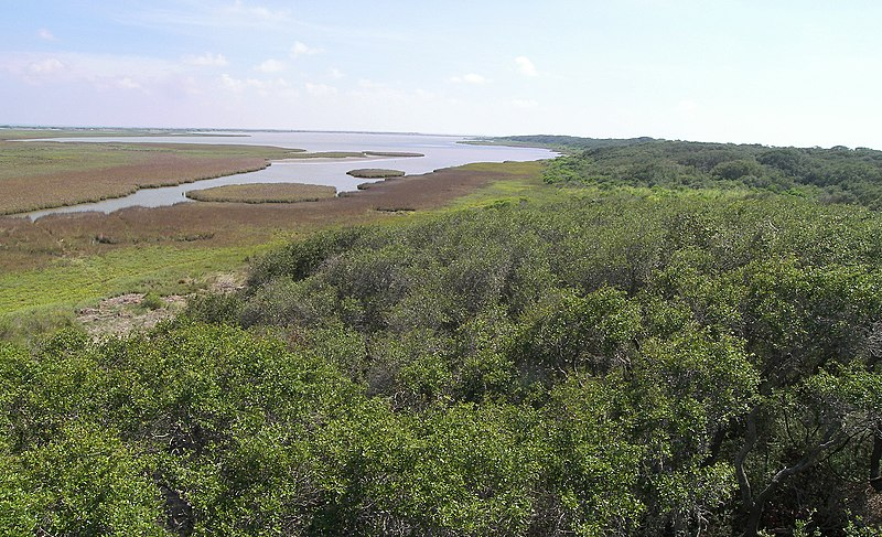 File:Aransas national wildlife refuge1.jpg