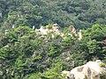 Ashiya Rock Garden13.jpg