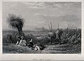 Australian grass trees or yaccas (Xanthorrhoea australis) on Wellcome V0043212.jpg