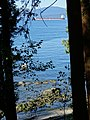 Autumn Scene in Stanley Park - Vancouver - BC - Canada - 12 (37943447002) (2).jpg