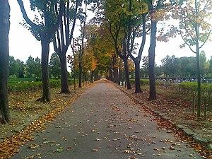 Cimetière parisien de Thiais - Image: Avenue O Cemetery Thiais