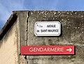 Avenue de Saint-Maurice (Miribel) - panneaux.jpg