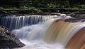 Aysgarth Falls MMB 53.jpg