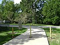 Azalea City Trail 56.jpg
