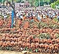 BANANA Kanyakumari-thkkalai pettai,Tamilnadu44India.jpg