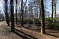 Baarn - Ravensteinselaan - Landgoed Groeneveld 2 - View on IJskelder.jpg