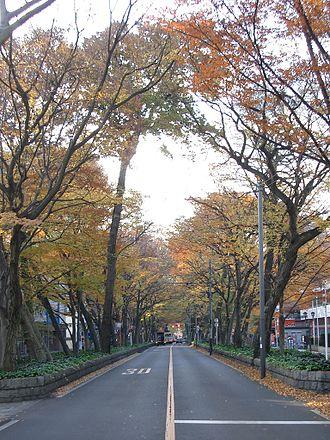 Fuchū, Tokyo - Baba Daimon Keyaki avenue