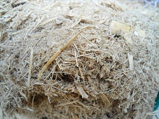 Bagasse Residue of sugar cane after juice extraction