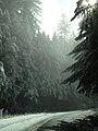 Bald Hills Road (22906638543).jpg