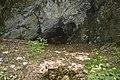 Barlang - panoramio (1).jpg