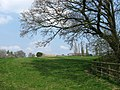 Barn Meadow - geograph.org.uk - 1811191.jpg