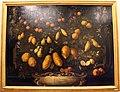 Bartolomeo bimbi, arance, bergamotti, cedri, limoni e lumie, 1715, 01.JPG