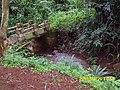 Batoufam, Cameroon - panoramio (4).jpg