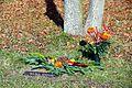 Baumgrab Hauptfriedhof Erfurt.jpg