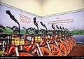 Bdood-bikes.jpg