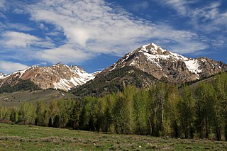 Hemingway–Boulders Wilderness a wilderness area in the US state of Idaho